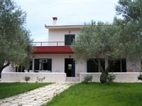 Luxury villa in an olive grove