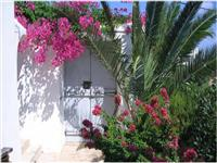 Beautiful house with extensive gardens, just metres from the sea.
